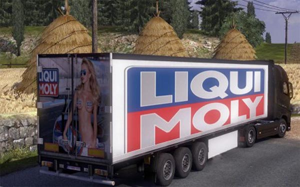 Liqui Moly Trailer Skin
