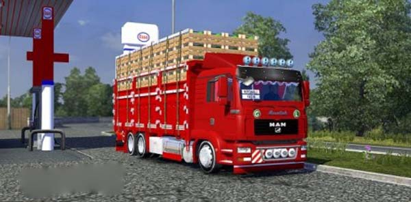 Man TGL Camion with interior + Load mode