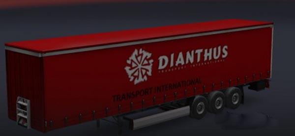 Dianthus Trailer