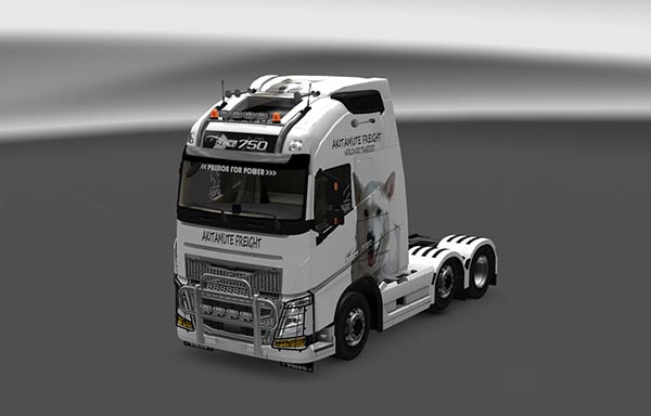 Volvo FH16 2003 Storm the Dog Skin